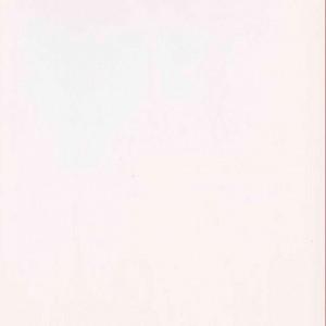 Resina Tinta Unika bianco